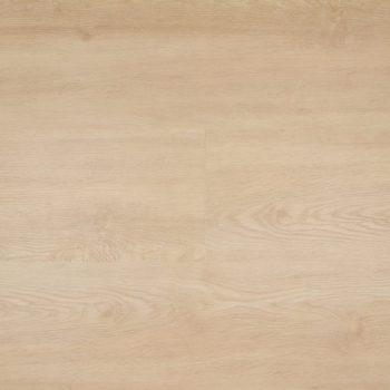 Therdex vloer basic | 2.2-series